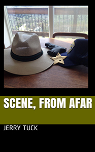 scene from afar novel cover
